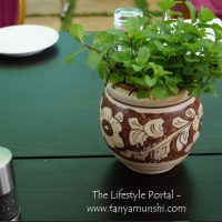 Fresh Mint - at The Trikaya Farms, Talegaon