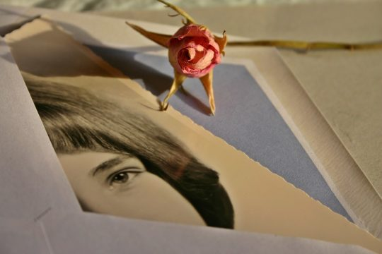 Love letters from around the world...Photo courtesy: Catkin