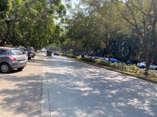 Image 2-Lush Green trees of Hiranandani Estate